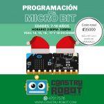 Curso de Programación con Microbit (7-10 años)